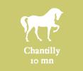 5- chantilly
