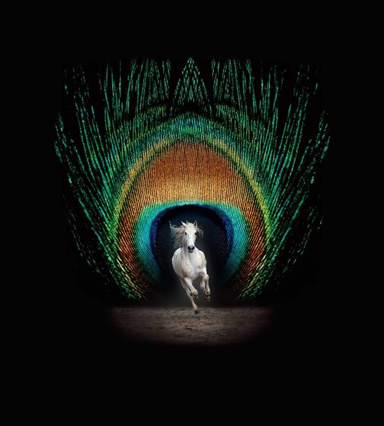 Spectacle Équestre Métamorphoses (avril à juin) – les Grandes Ecuries – Chantilly